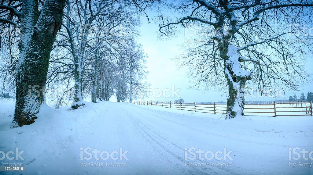 Invierno Alley - foto de stock