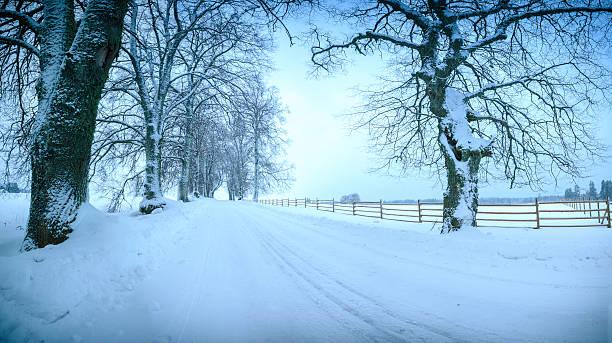 Inverno Alley - foto de acervo