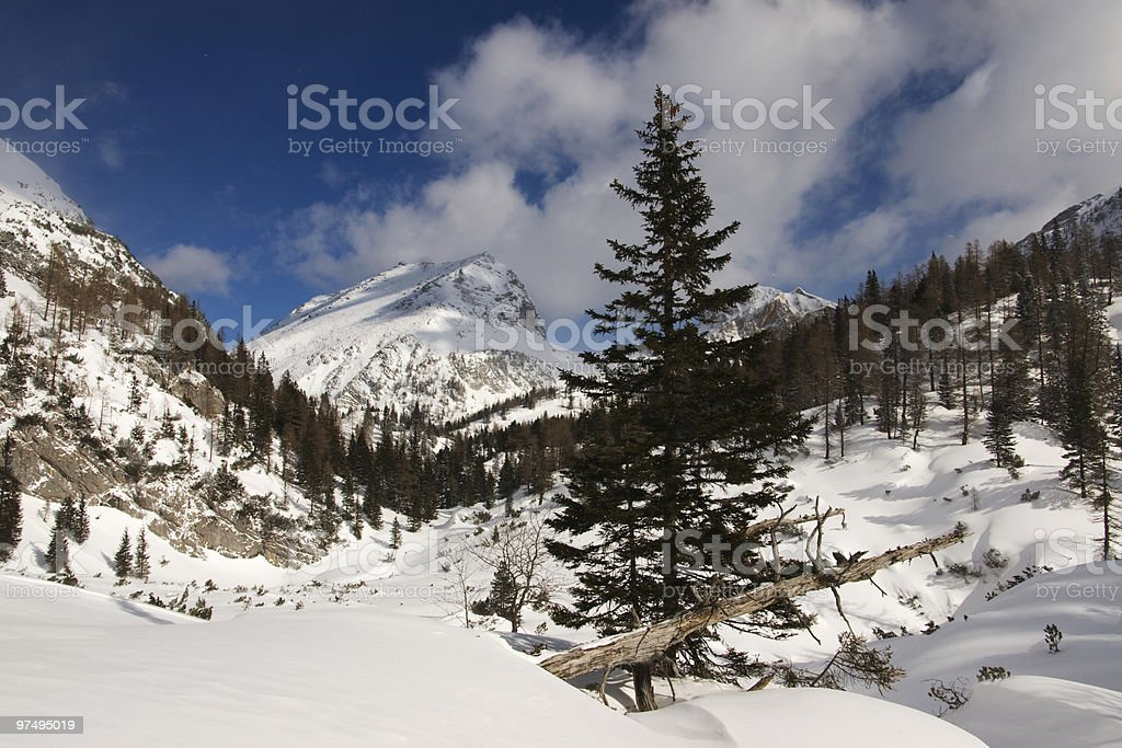 Winter alpin view royalty-free stock photo