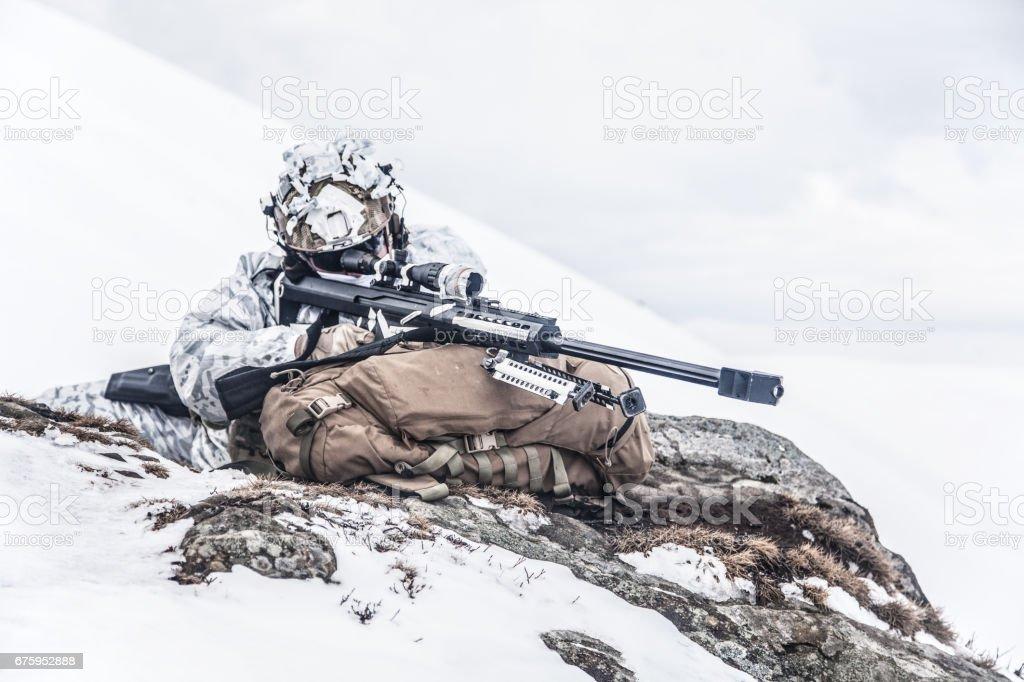 Guerre des montagnes arctiques en hiver - Photo