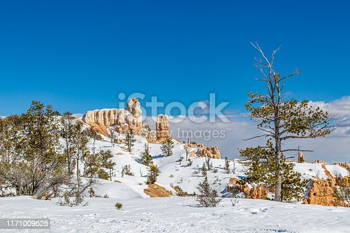A snowy view over Bryce Canyon on a sunny winters day