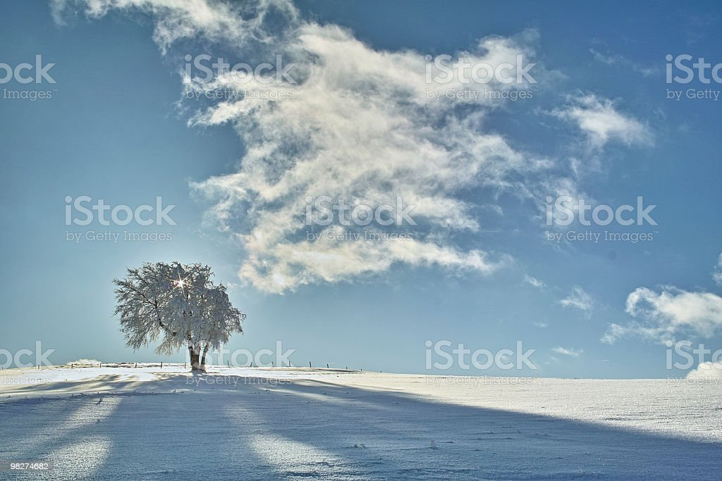 winter at Schauinsland in Black Forest royalty-free stock photo