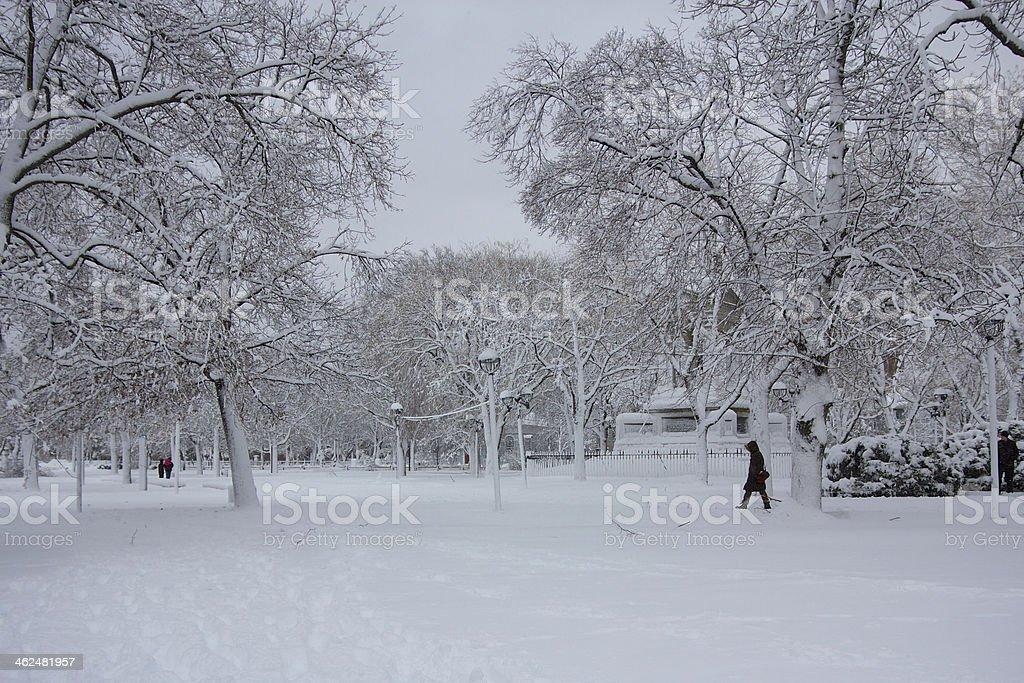 Winter at the Cambridge Common stock photo