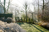 A landscape view on a winter morning in frost & sunlight of a garden, plant borders, green frosty grass lawn brown.