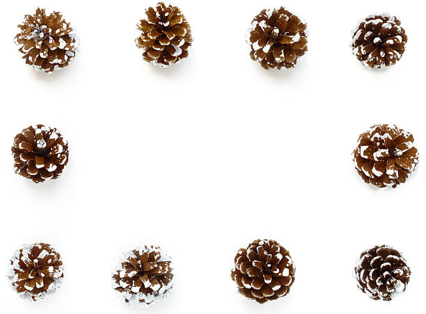 Winter Background Frame out of Pine Cones - foto de stock
