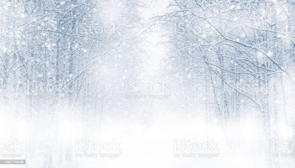 Sfondo invernale. - Foto stock royalty-free di Albero