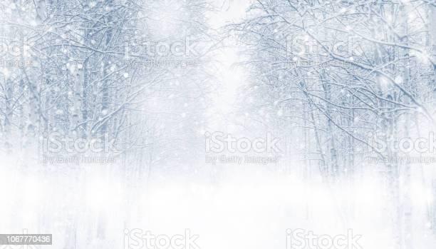 Winter background picture id1067770436?b=1&k=6&m=1067770436&s=612x612&h=wviovlchkqdymjhqh9qsyihokhrak e1mqpw7vz6zg4=