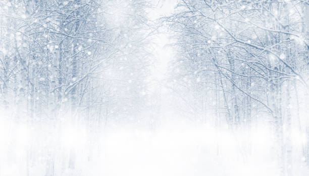 winter background. - snowflake background stock pictures, royalty-free photos & images
