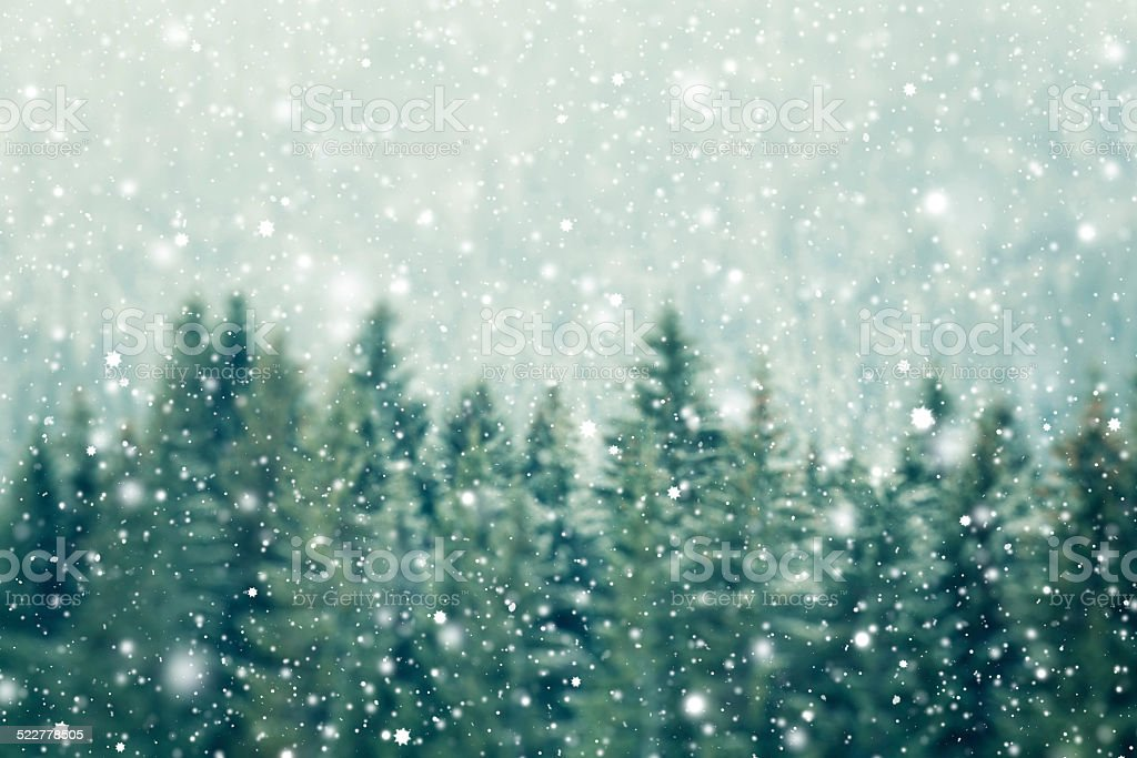 Winter-Hintergrund – Foto