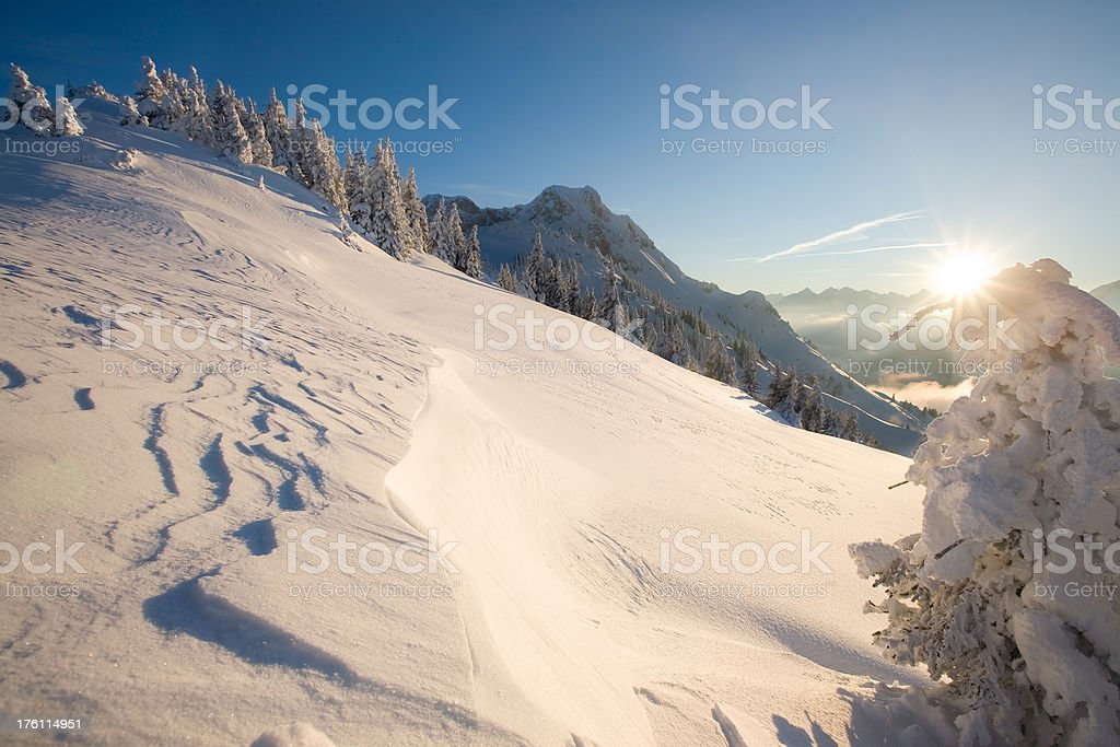 winter backlight royalty-free stock photo