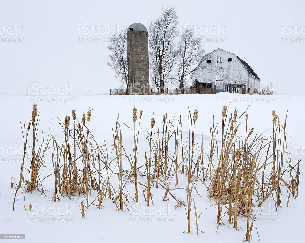 Winter Barn and Silo royalty-free stock photo
