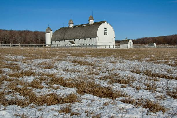 Winter Barn stock photo