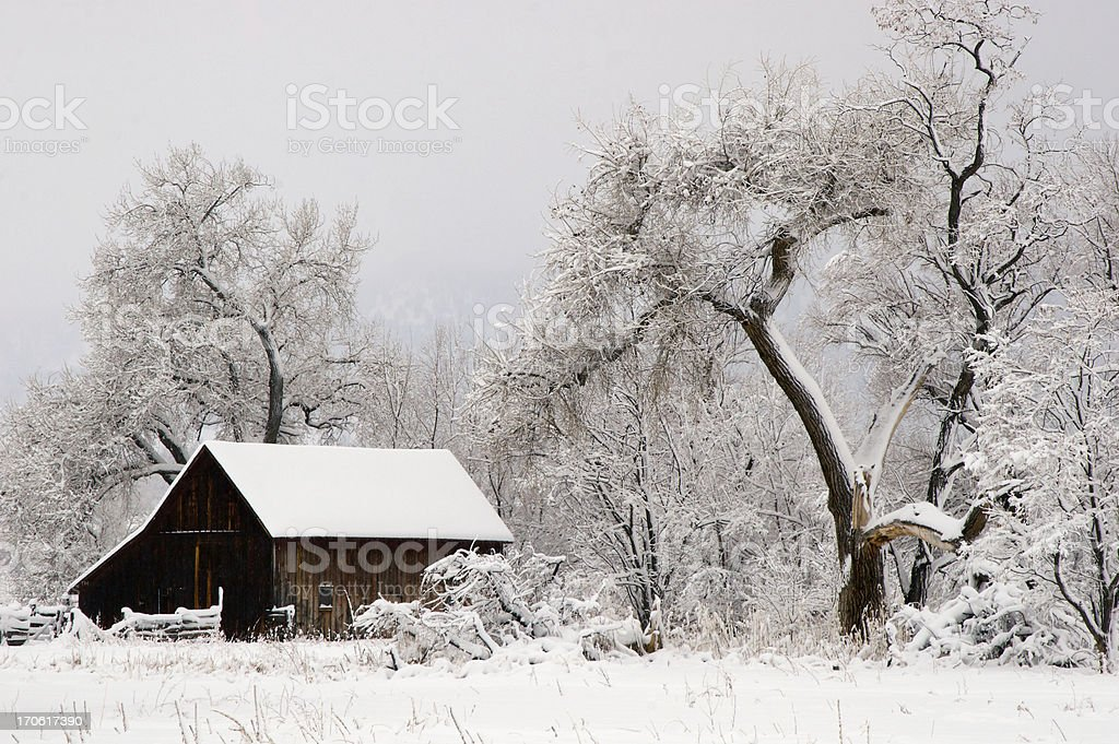 Winter Barn Scene stock photo