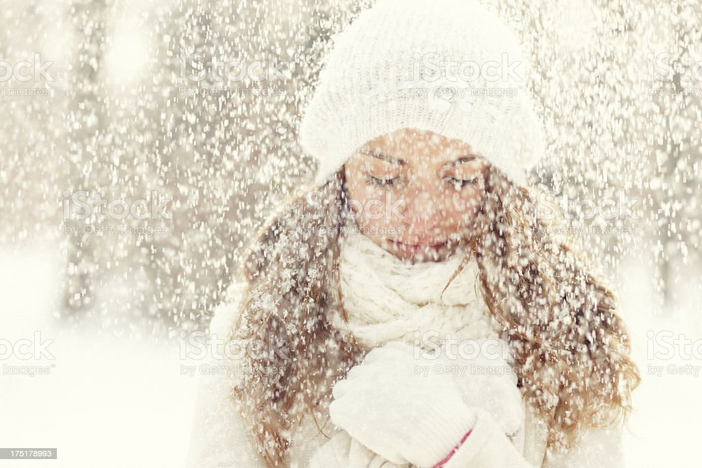 winter beauty on a snowy day royalty-free stock photo