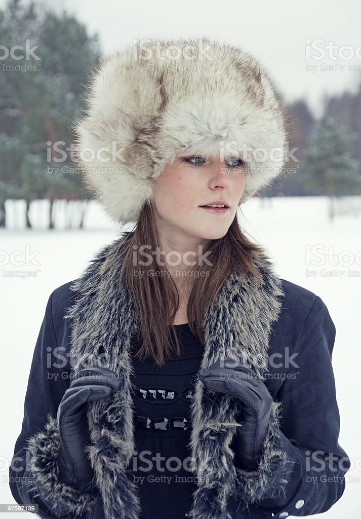 Winter beauty royalty-free stock photo