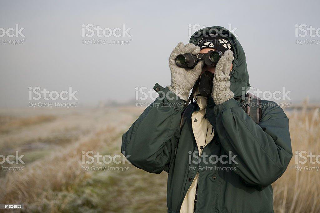 Winter bird watching in marshland stock photo