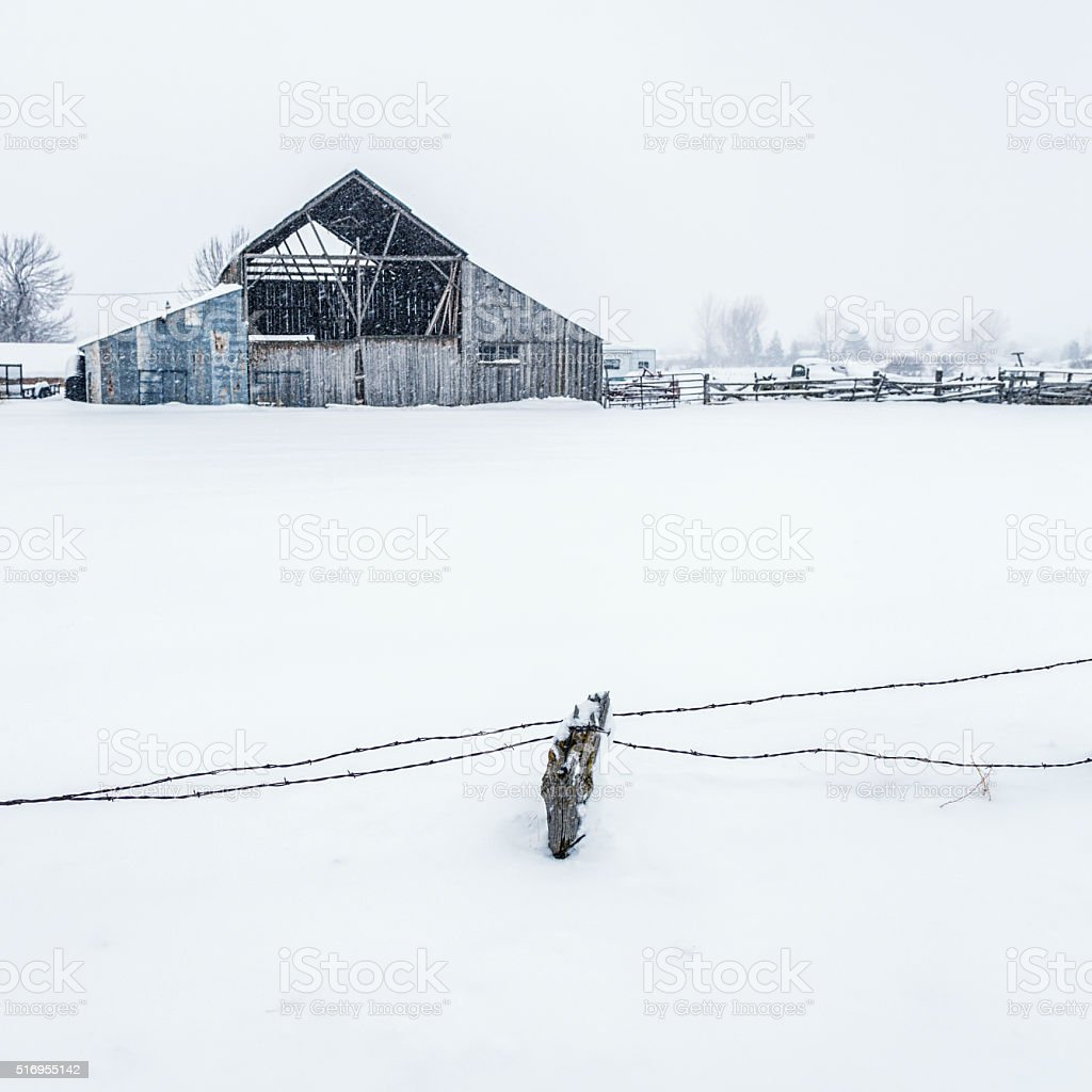 Winter Blizzard Barn Barbed Wire Wooden Fence Post Stock Photo ...