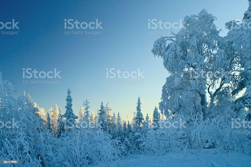 Winter blue pastel landscape, sunset royalty-free stock photo