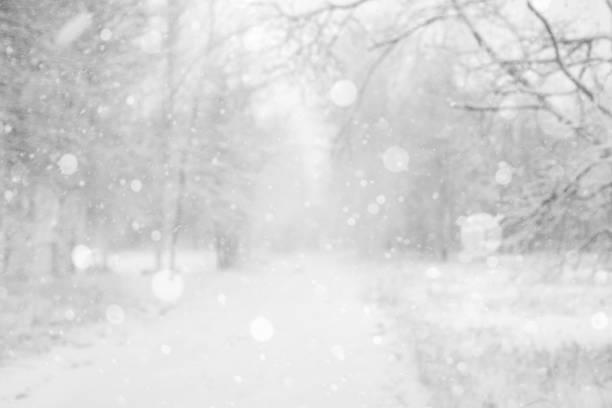 Winter blurred background stock photo