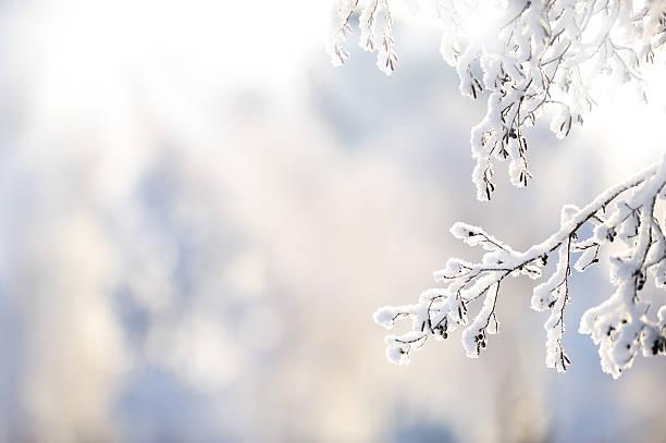 derivación de invierno cubierto de nieve - invierno fotografías e imágenes de stock