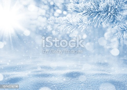 Christmas landscape with snowdrifts and pine branches in the frost.