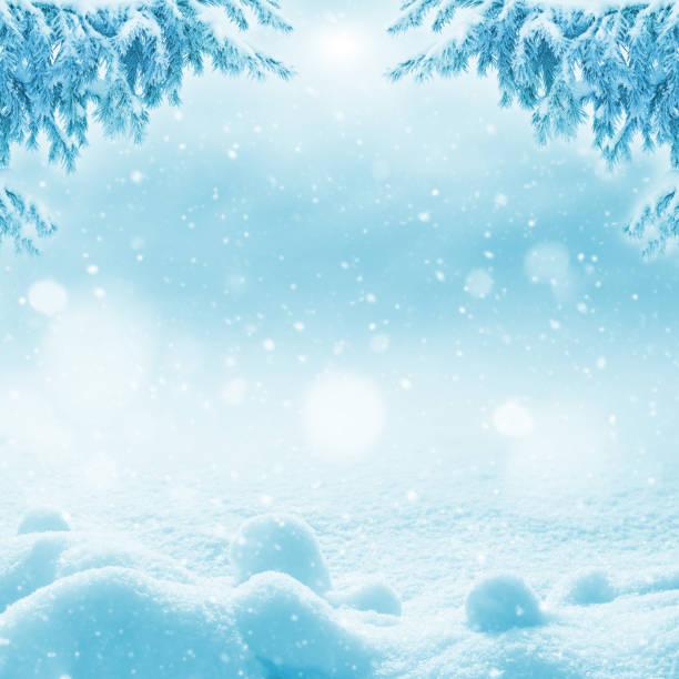 Winter bright background. stock photo
