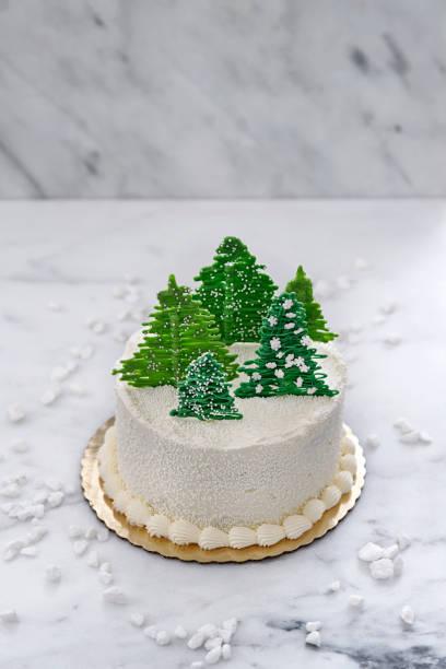 Winter Cake stock photo
