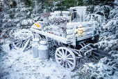 Winter snow embrased carriage with farmers market fruit