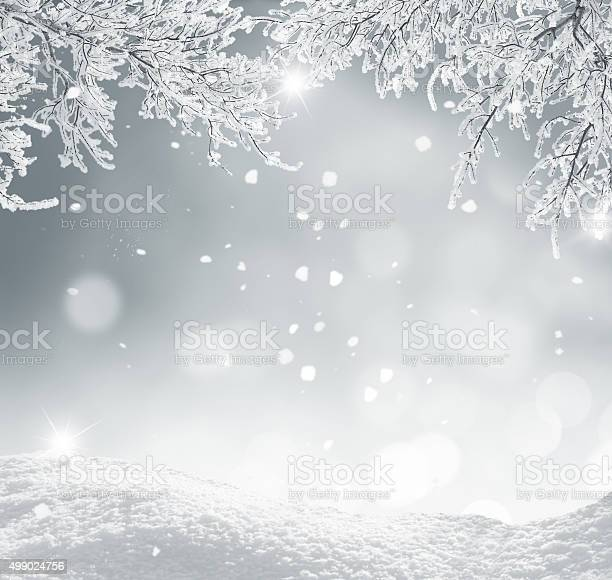 Photo of winter christmas background