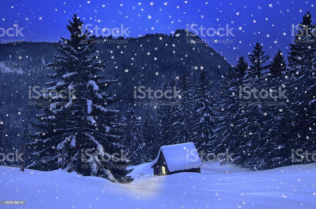 Winter Christmas stock photo