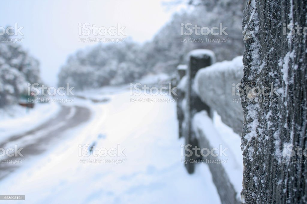 Winter cold day with landscape of trees, road and sky and snow on top at Mount Buller, a resort village in eastern Victoria, Australia. stock photo