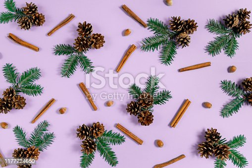 istock Winter composition. Frame made of fir tree branches, pine, acorn and cinnamon on violet background. Autumn, fall, winter concept. Flat lay, top view, copy space 1177724650
