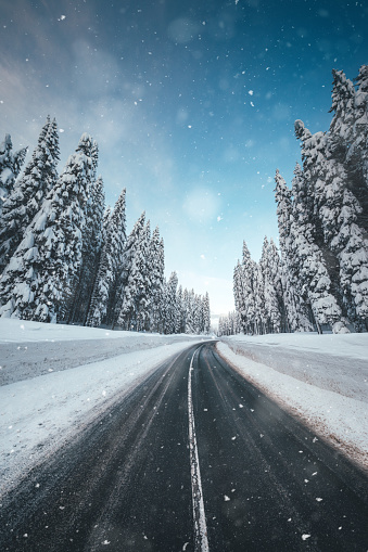 Winter conditions on alpine road through the snowcapped forest.