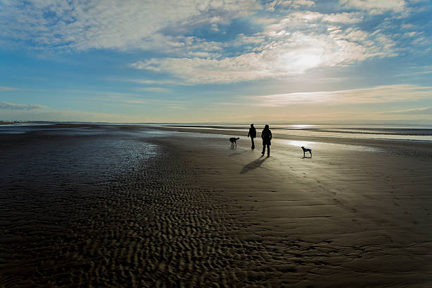 Winter couple beach walk A couple, with two dogs walk along a sandy beach somerset england stock pictures, royalty-free photos & images