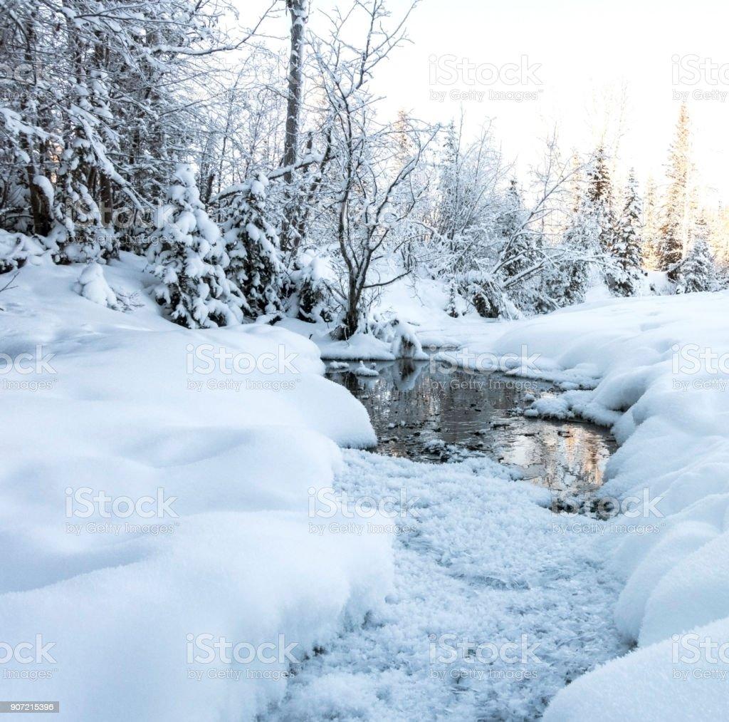 winter-Kristallen – Foto