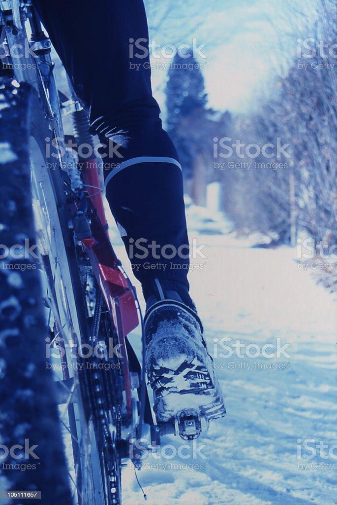 Winter Cyclist royalty-free stock photo