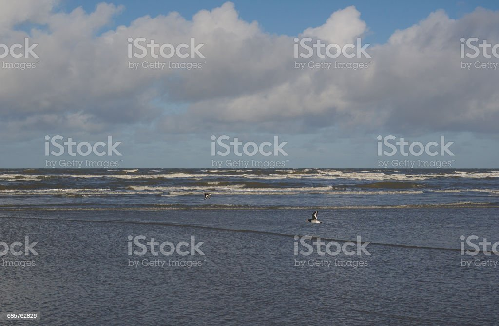 Winter day at the seashore of the island of Borkum while tide change foto stock royalty-free