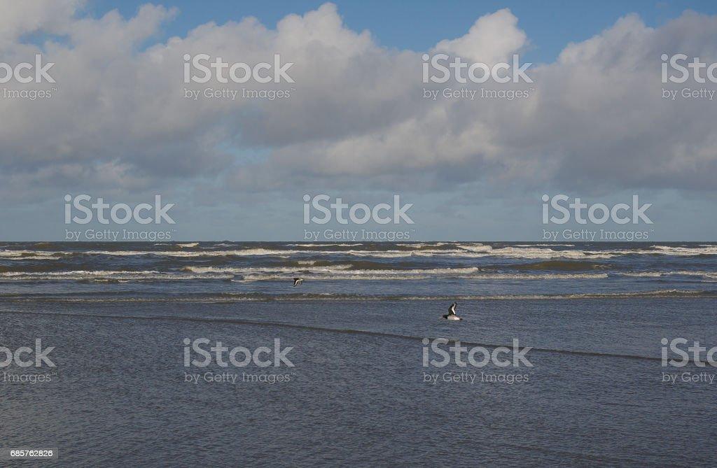 Vinterdag på stranden av ön av Borkum medan tidvattnet ändra royaltyfri bildbanksbilder