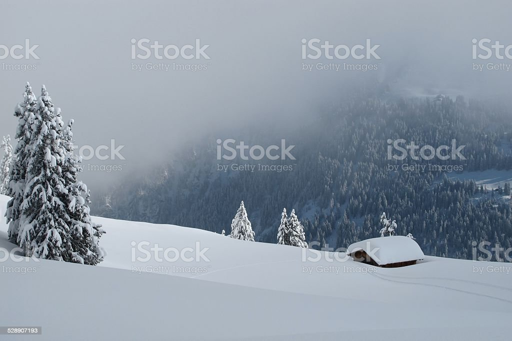 Winter day in the Alps stock photo