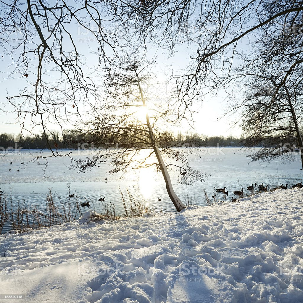 Winter Day - Sunset royalty-free stock photo