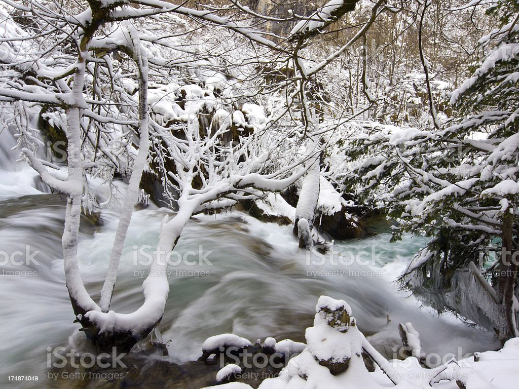 Winter detail royalty-free stock photo