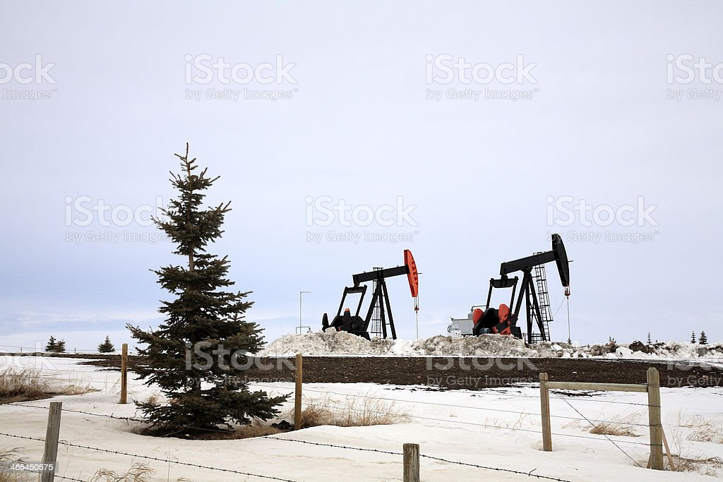 Winter Drilling With Pump Jacks And Spruce Trees royalty-free stock photo