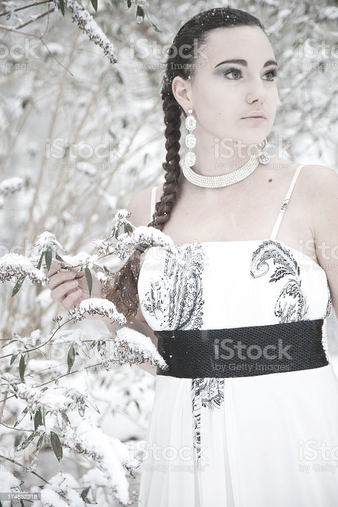Winter Elegance royalty-free stock photo