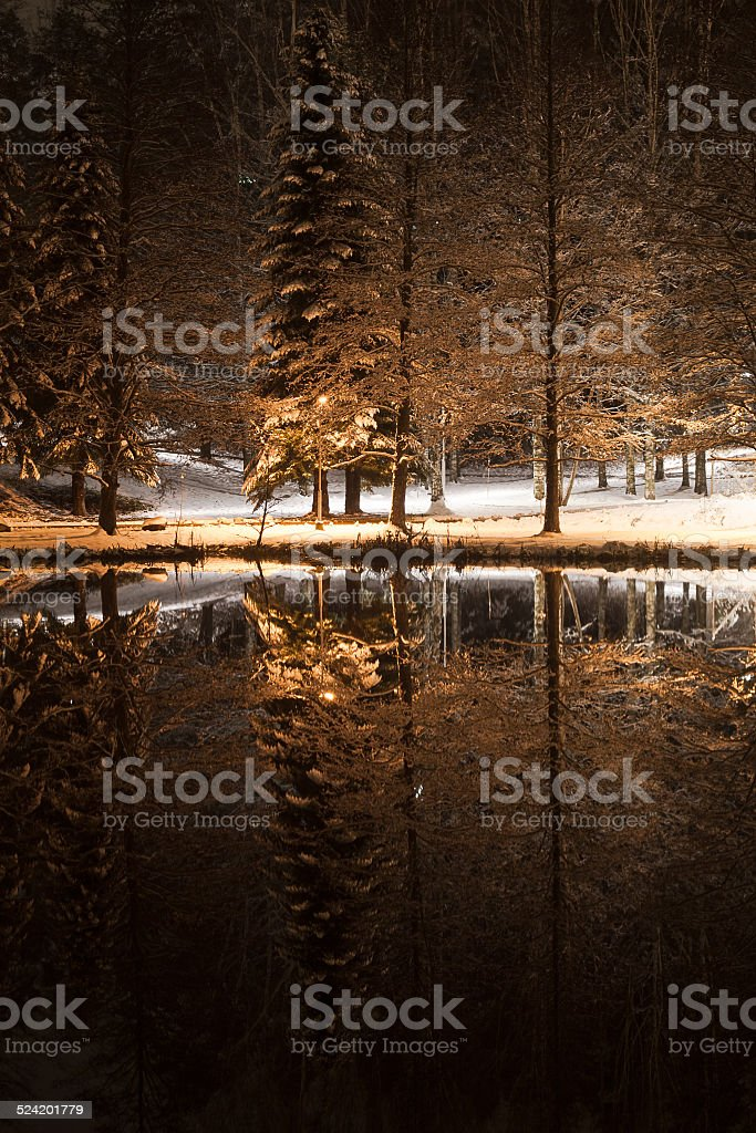 Winter evening by a pond in a park stock photo