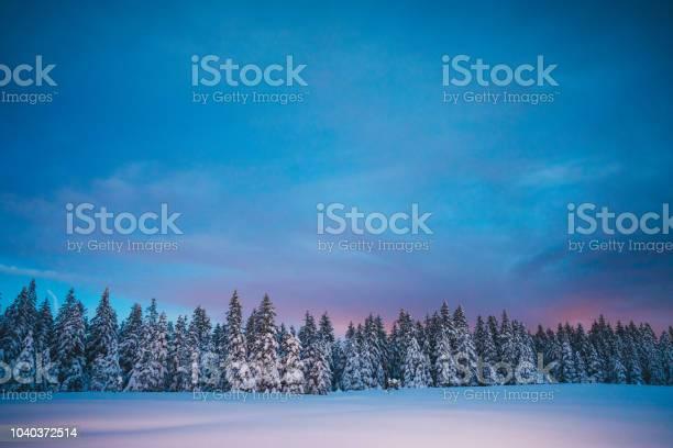 Winter fairy tale picture id1040372514?b=1&k=6&m=1040372514&s=612x612&h=vepcwz3qjftgcogvhy fbj22g4bebtolf4sgq6ctjbi=
