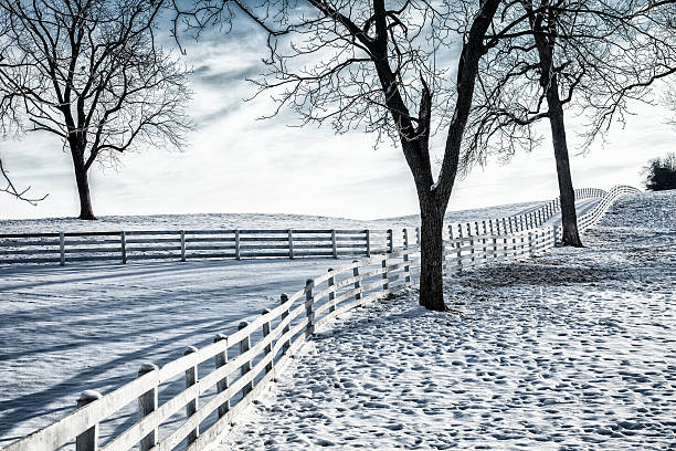 Winter Farm stock photo