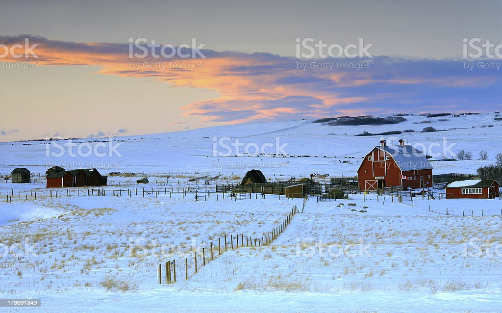 Winter Farm Scene stock photo