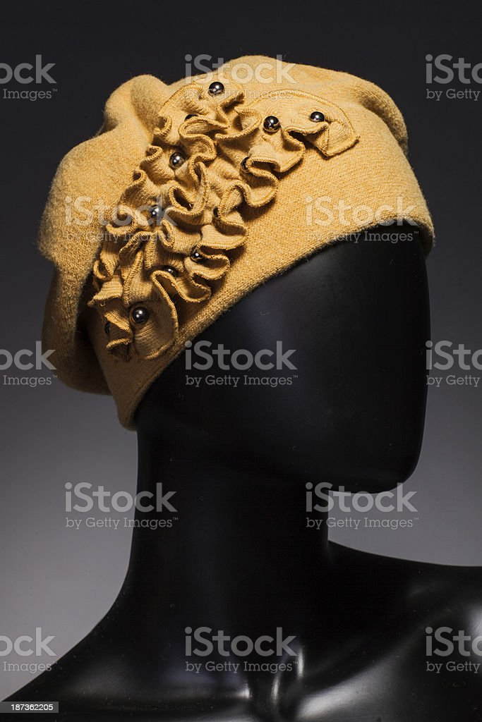 Winter fashion royalty-free stock photo