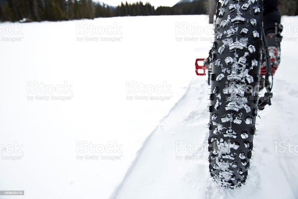 Winter Fat Bike Tire stock photo