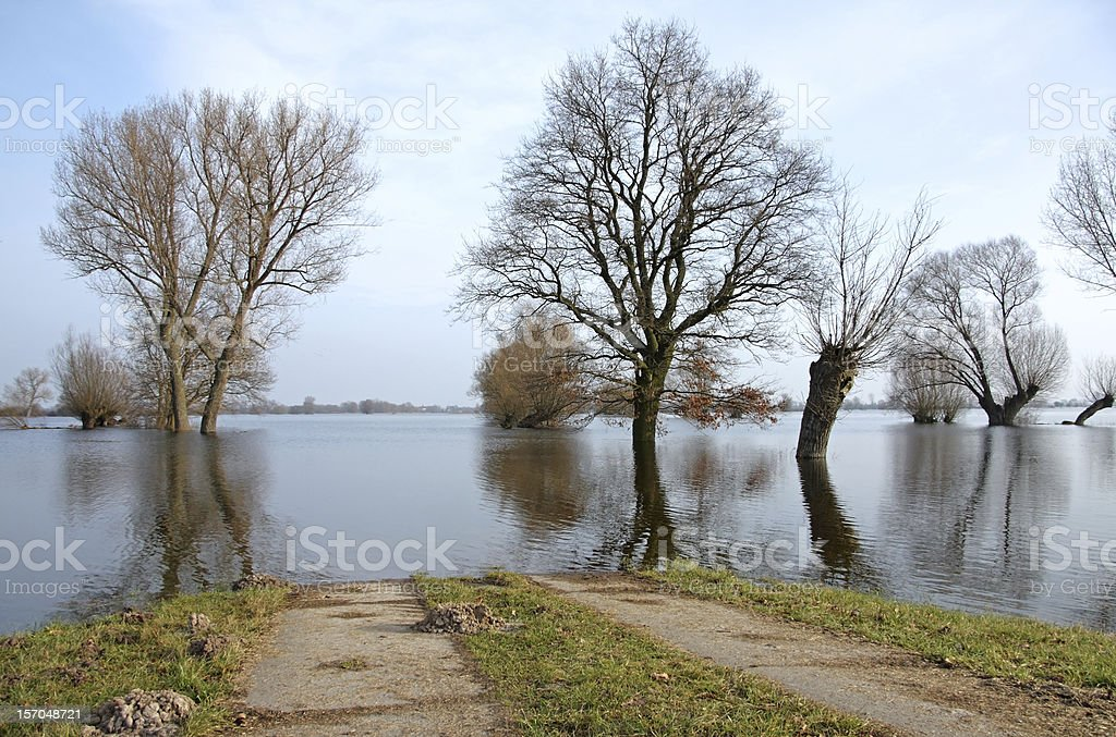 Winter flood at the Havel River. stock photo